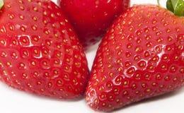 Perfecte Aardbeien Royalty-vrije Stock Afbeelding