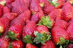 Perfecte Aardbeien Stock Afbeeldingen