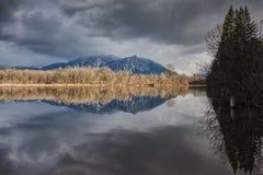 Perfecte Bezinning van Bergen en Bomen in Meer stock foto's