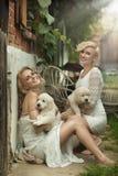 Perfecte blonde schoonheden Stock Afbeelding
