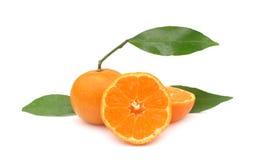 Perfecte de mandarijntjes van clementines Stock Foto