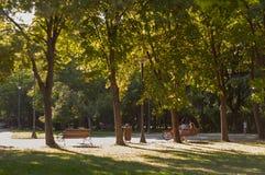 Perfecte middag in park V royalty-vrije stock afbeelding