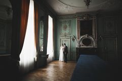 Perfecte paarbruid, bruidegom die en in hun huwelijksdag stellen kussen royalty-vrije stock foto