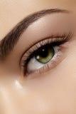 Perfecte vorm van wenkbrauwen, bruine oogschaduw en lange wimpers Close-upmacro van gezicht dat van manier het rokerige ogen word stock foto's