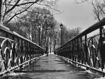 Perfection géométrique le pont célèbre du ` s d'amant Kyiv ou à Kiev, Ukraine i Photos libres de droits