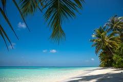 Perfectionnez la plage tropicale de paradis d'île et le vieux bateau Photo libre de droits
