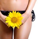 Perfectionnez le corps bronzé de femme d'isolement photos stock