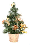 Perfectly isolated small christmas tree royalty free stock image