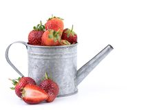 Perfectly retouched fresh strawberry fruit with sliced half in silver colored watering can on white background. stock image