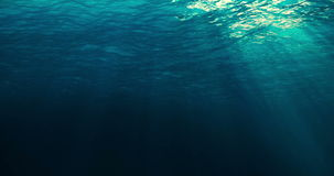 Perfectly seamless loop of deep blue caribbean ocean waves from underwater background stock footage
