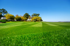 Perfectly striped freshly mowed garden lawn Royalty Free Stock Photos