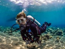 Perfectly trimmed female diver stock photography