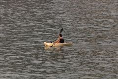 Perfekt dag för kayaking Härlig ung kvinna som paddlar, medan sitta i kajak arkivbilder