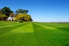 Perfekt gjord randig nytt mejad trädgårds- gräsmatta Royaltyfria Bilder