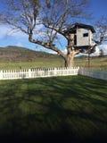 Perfekt gräsmatta och Treehouse för bild med berg i avstånd royaltyfri foto