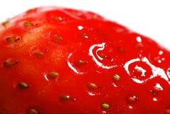perfekt jordgubbe för closeup Royaltyfri Fotografi