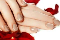Perfekt Manicure Kvinnahänder med manicured naturlig beiga spikar fotografering för bildbyråer