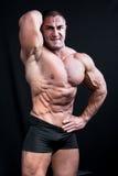 Perfekt muskulöst posera för man royaltyfri fotografi