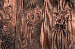 Perfekt orange gråaktigt orangish ojämnt gammalt mörkt ljust trä t Fotografering för Bildbyråer