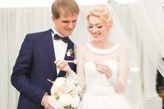 Perfekt parbrud, brudgum som poserar och kysser i deras bröllopdag royaltyfria bilder