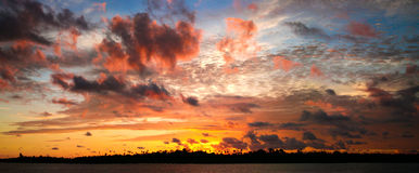perfekt sky Arkivfoto