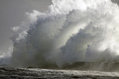 perfekt stormwave Arkivfoton