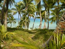 Perfekt strandsikt Arkivbild