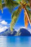 Perfekt tropiskt strandlandskap - öar av Filippinerna, Palawan Royaltyfri Foto