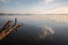 Perfekta himmel- och molnreflexioner på en sjö, med en trädstam Royaltyfri Bild