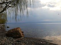 Perfekte Ansicht durch den See bewölkter Tag lizenzfreie stockbilder