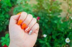 Perfekte Maniküre und natürliche Nägel Attraktives modernes Nagelkunstdesign orange Herbstdesign lange gut-gepflegte Nägel lizenzfreie stockbilder
