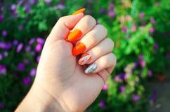 Perfekte Maniküre und natürliche Nägel Attraktives modernes Nagelkunstdesign orange Herbstdesign lange gut-gepflegte Nägel lizenzfreie stockfotos