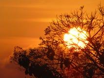 Perfekte Morgensonne in Indonesien stockfotografie