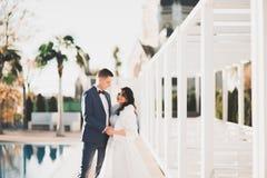 Perfekte Paarbraut, Bräutigam, der in ihrem Hochzeitstag aufwirft und küsst lizenzfreie stockbilder