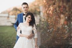 Perfekte Paarbraut, Br?utigam, der in ihrem Hochzeitstag aufwirft und k?sst lizenzfreie stockfotos