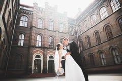Perfekte Paarbraut, Br?utigam, der in ihrem Hochzeitstag aufwirft und k?sst stockfotografie
