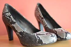Perfekte Schuhe benötigt jede Frau Stockbild