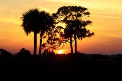 Perfekte untergehende Sonne des Bildes Stockfoto