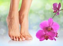 Perfekte weibliche Füße stockfotografie