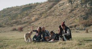 Perfekte Zeit für die Freunde am Picknick niederlegend auf dem Gras, das warme Zeit Tee zusammen trinkend und mit spielend verbri stock footage