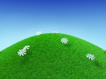 Perfekter grasartiger Hügel Stockfoto