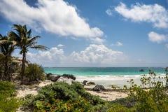 Perfekter mexikanischer Strand Stockfoto