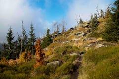 Perfekter sonniger Herbsttag in den Bergen lizenzfreie stockfotografie