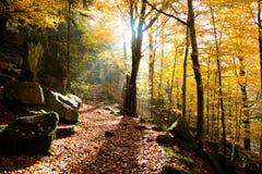 Perfekter sonniger Herbsttag in den Bergen lizenzfreie stockbilder