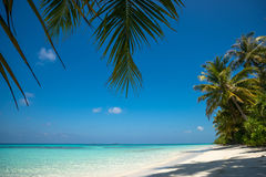 Perfekter Tropeninselparadiesstrand und altes Boot Lizenzfreies Stockfoto