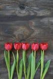 perfezioni i tulipani ordinati su una vecchia priorità bassa di legno Fotografie Stock