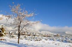 Perfezioni il giorno di inverno Immagine Stock