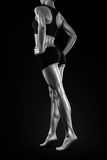 Perfezioni le gambe regolari ed incerata di misura, della donna Immagini Stock