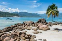 Perfezioni una spiaggia della palma, isola grande di Ilha Paradi tropicale Fotografia Stock