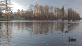 Perfil blanco de Gatchina CineStyle del lago del lapso de tiempo metrajes